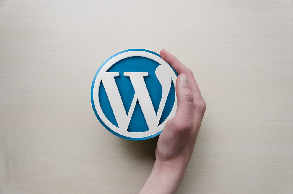 WordPress moduly